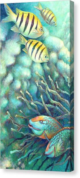 Parrot Fish Canvas Print - Sea Folk I - Sergeant Majors by Nancy Tilles