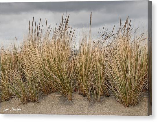 Sea Grass And Sand Canvas Print