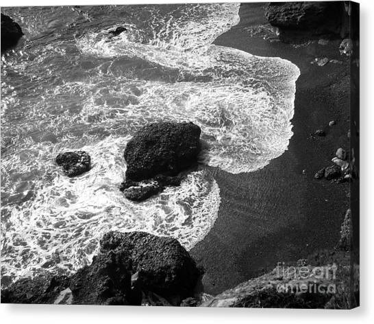 Sea Lion Cove Canvas Print
