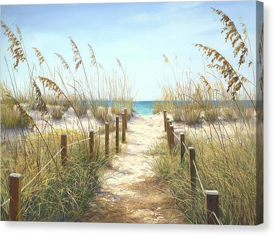 Coconut Canvas Print - Sea Oat Path by Laurie Snow Hein