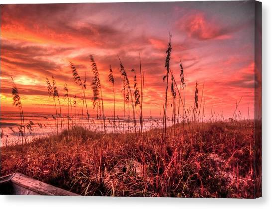 Sea Oats At Dawn  Canvas Print