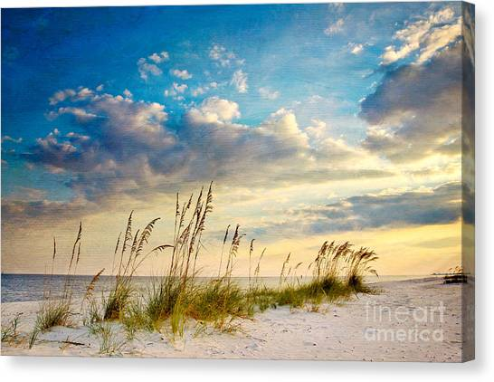 Beach Sunsets Canvas Print - Sea Oats Sunset by Joan McCool