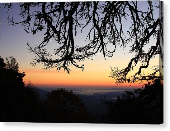Sea Of Clouds On The Blue Ridge Canvas Print