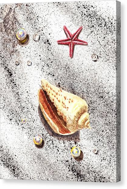 Seashell Fine Art Canvas Print - Sea Shells Pearls Water Drops And Seastar  by Irina Sztukowski