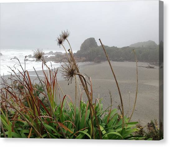 Sea Shore Canvas Print by Ron Torborg