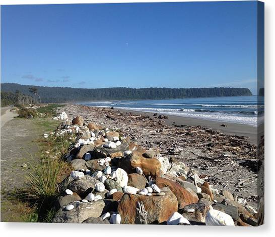 Sea Shore With Rocks Canvas Print by Ron Torborg
