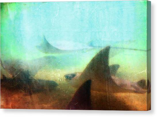 Ocean Life Canvas Print - Sea Spirits - Manta Ray Art By Sharon Cummings by Sharon Cummings