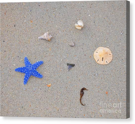 Shark Teeth Canvas Print - Sea Swag - Dark Blue by Al Powell Photography USA