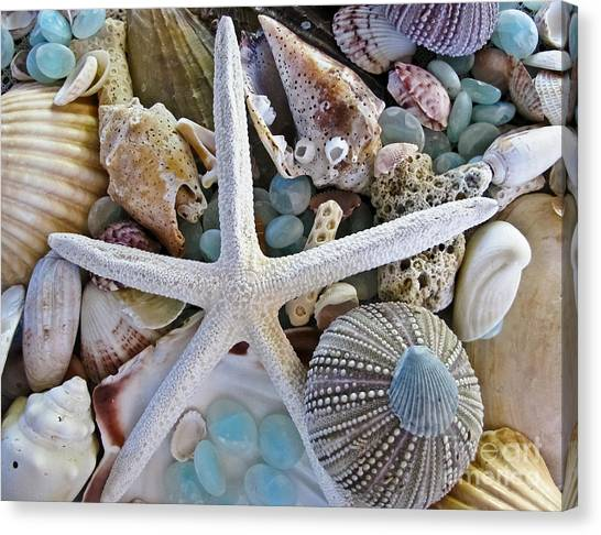 Glass Art Canvas Print - Sea Treasure by Colleen Kammerer