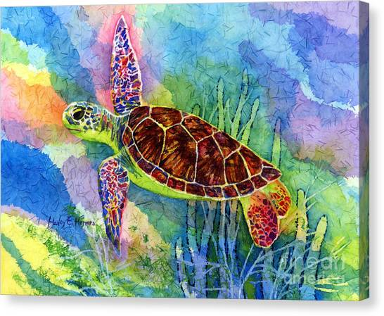 Scuba Diving Canvas Print - Sea Turtle by Hailey E Herrera