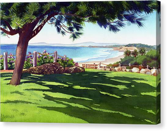 Pine Trees Canvas Print - Seagrove Park Del Mar by Mary Helmreich