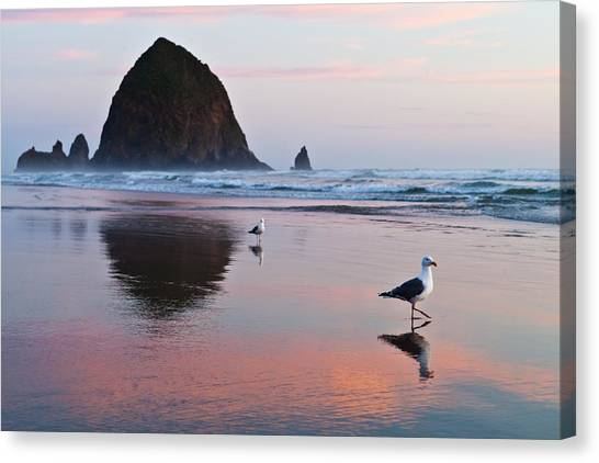 Seagulls And Haystack Rock Canvas Print
