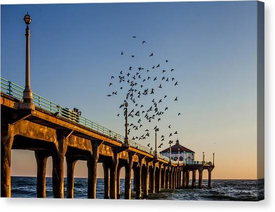 Seagulls At The Pier Canvas Print