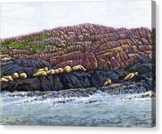Seal Island Canvas Print by Thomas Michael Meddaugh