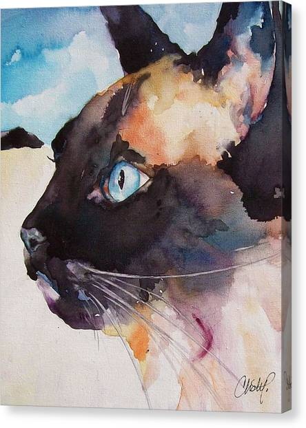 Siamese Canvas Print - Seal Point Siamese Cat by Christy  Freeman