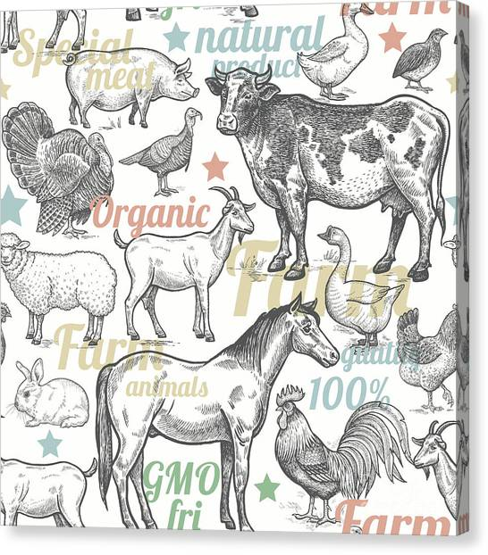Pigs Canvas Print - Seamless Pattern With Livestock by Mamita