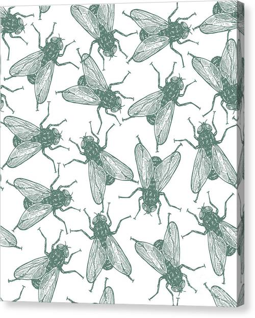 Seamless Vector Flies Pattern In Canvas Print by Lestyan