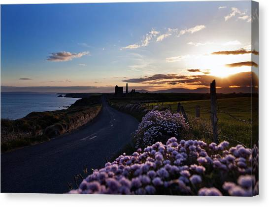 Waterford Canvas Print - Seapink Lining The Country Road by Panoramic Images