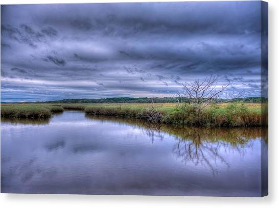 Searching Canvas Print by David Mcchesney