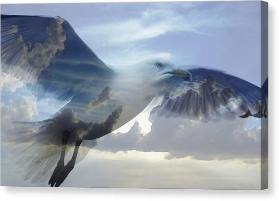 Gulls Canvas Print - Searching The Sea - Seagull Art By Sharon Cummings by Sharon Cummings