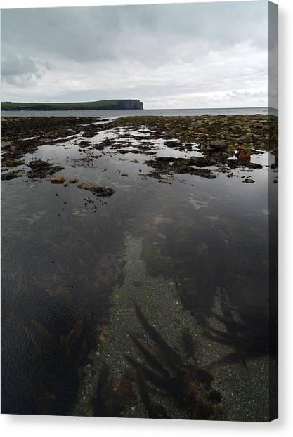 Seascape Canvas Print by Steve Watson