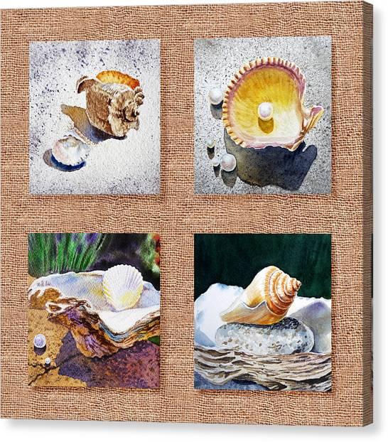 Seashell Fine Art Canvas Print - Seashell Collection I by Irina Sztukowski