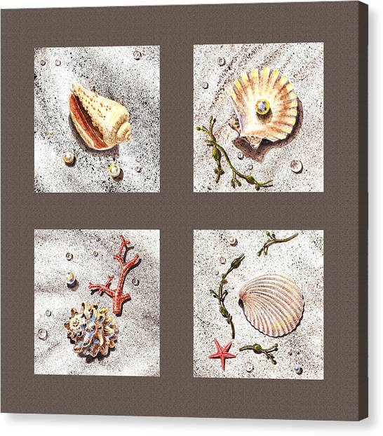 Seashell Fine Art Canvas Print - Seashell Collection IIi by Irina Sztukowski