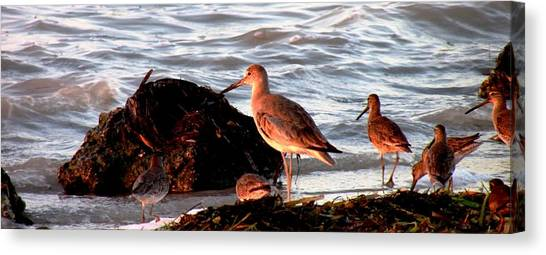 Seaside Diner Canvas Print by Will Boutin Photos