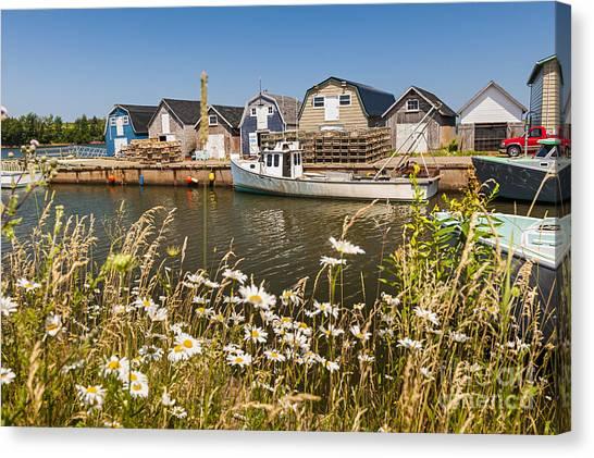 East Village Canvas Print - Seaside View Of Prince Edward Island by Elena Elisseeva
