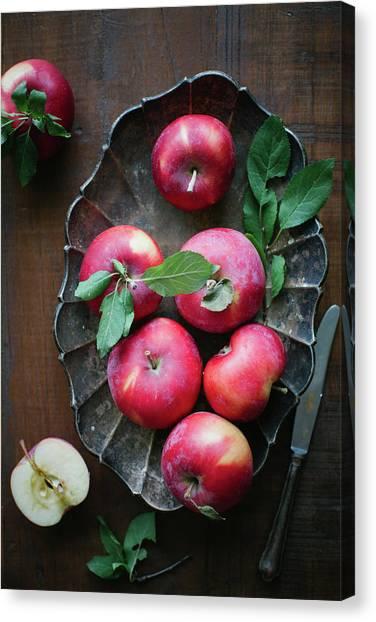 Seasonal Apples Canvas Print