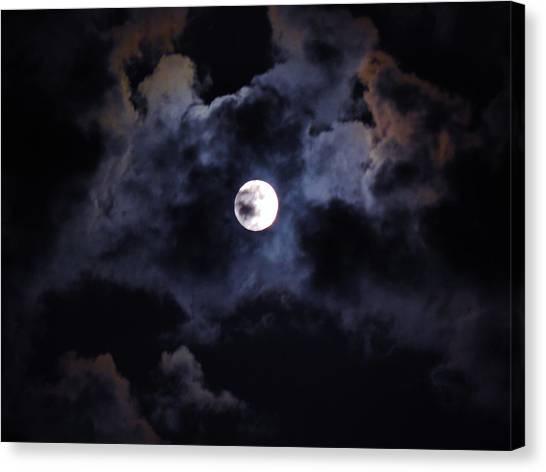 Seasonal Blue Moon IIi Canvas Print