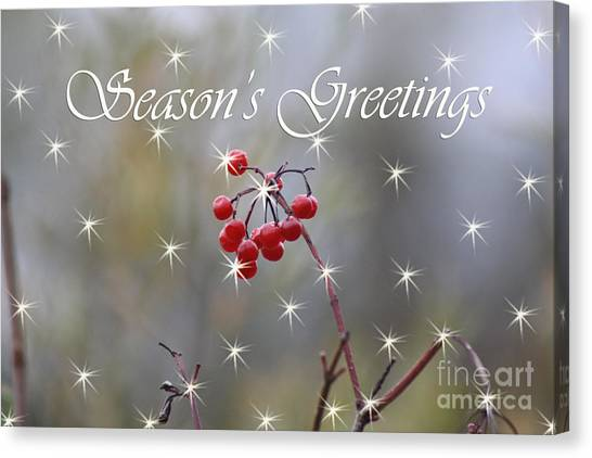 Seasons Greetings Red Berries Canvas Print