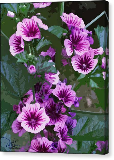 Seattle Hollyhocks Canvas Print