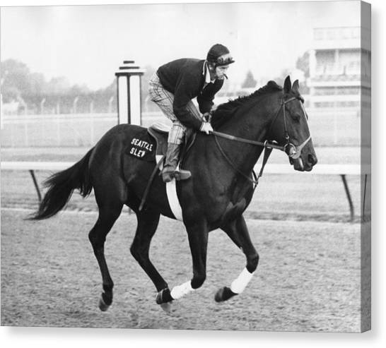 Horses Canvas Print - Seattle Slew Horse Racing #03 by Retro Images Archive