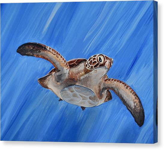 Seaturtle Canvas Print
