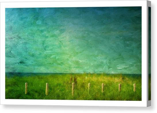 Seaview Canvas Print by Barbara Socor