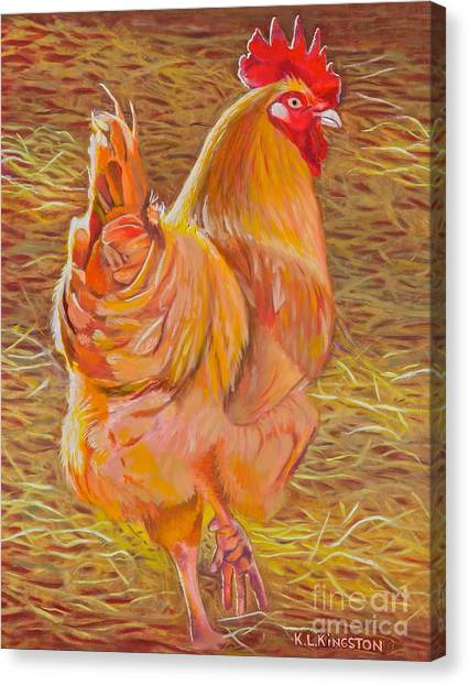 Sebastopol Rooster Canvas Print