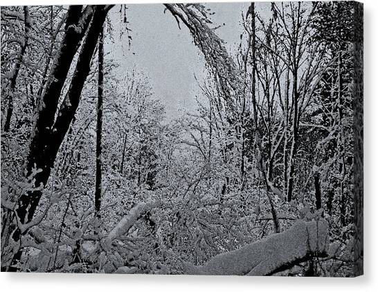 Second Winter Storm Canvas Print by Mary Anne Williams