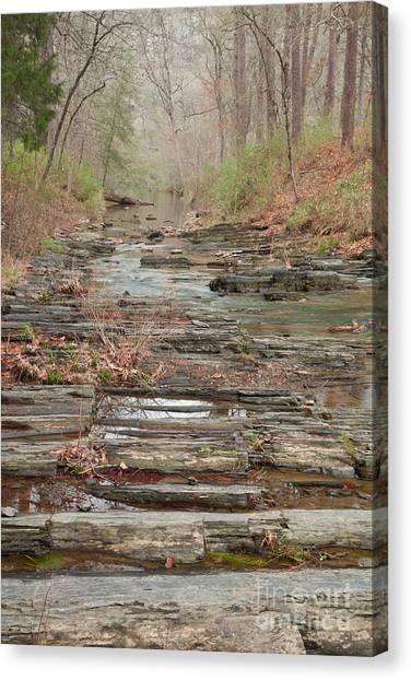 Secret Creek Canvas Print
