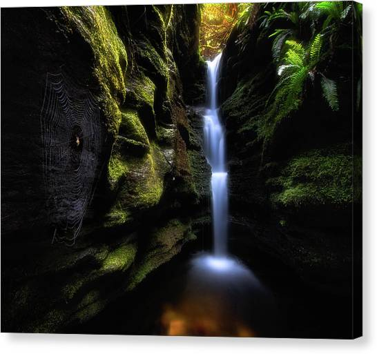 Spider Web Canvas Print - Secret Falls by Fei Shi