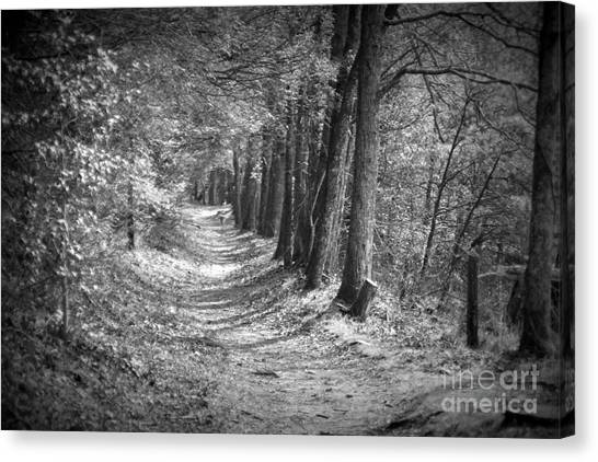 Secret Pathway Canvas Print