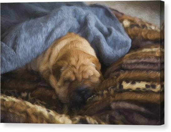 Security Blanket Canvas Print