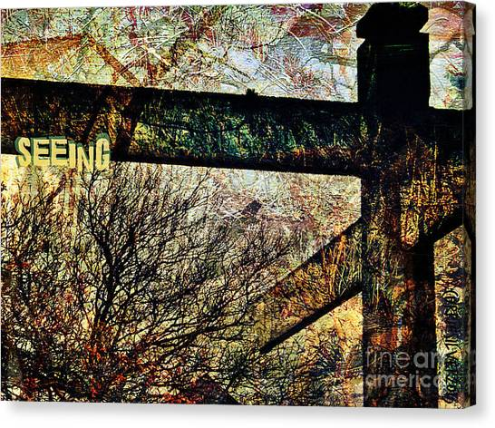 Seeing Canvas Print by Currie Silver