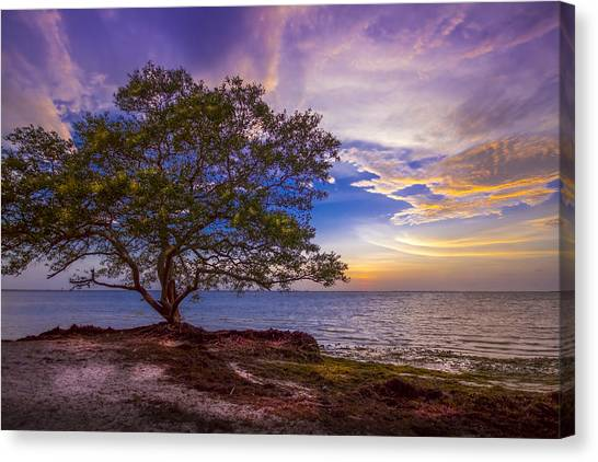 Low Tide Canvas Print - Seeing Is Believing by Marvin Spates