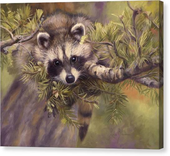 Raccoons Canvas Print - Seeking Mischief by Lucie Bilodeau