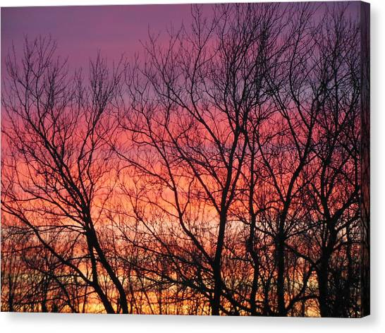 Sensational Sunrise Marching In Canvas Print