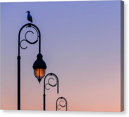 Sentinel At Sunset Canvas Print by Steve Stanger