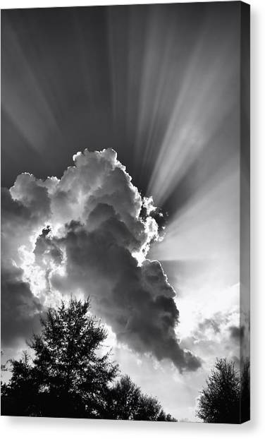 September Rays Canvas Print
