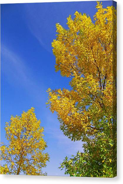 September Sky Canvas Print