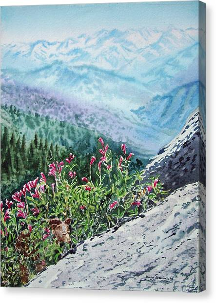 Irina Canvas Print - Sequoia National Park by Irina Sztukowski